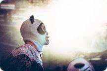 Den Svenska Björnstammen & Panda da Panda